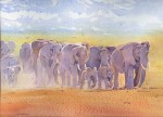 Herd of elephants 2014 by Susan Piesse